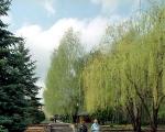 Парк санатория Моршинский