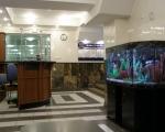 Холл санатория Мраморный дворец