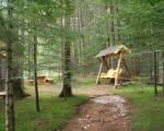Туркомплекс GolynSki зона отдыха в лесу